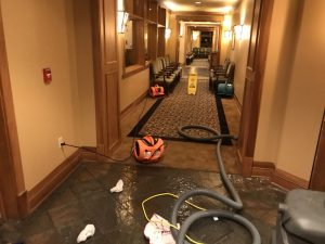 technician cleaning water damage in a commercial office